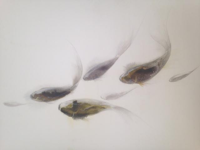 « Poissons » encre de chine crayon et gouache sur papier 54-64 cm